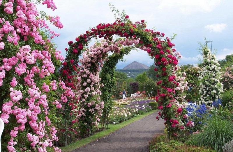 Садовые Арки Из Металла Фото